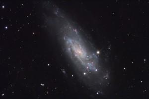 ASTR 555 - Galaxies I